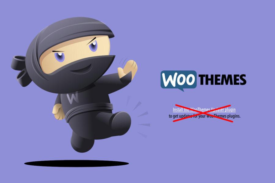 Eliminar mensaje de actualización de Woothemes en WordPress - Iborra Web Design