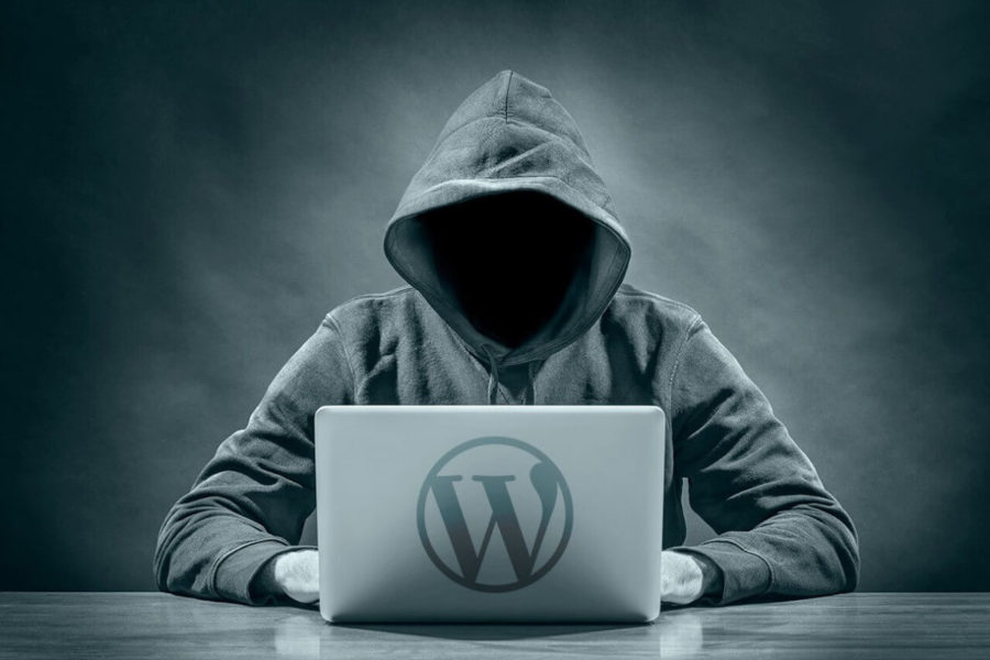 Deshabilitar las sugerencias del login en WordPress - Iborra Web Design