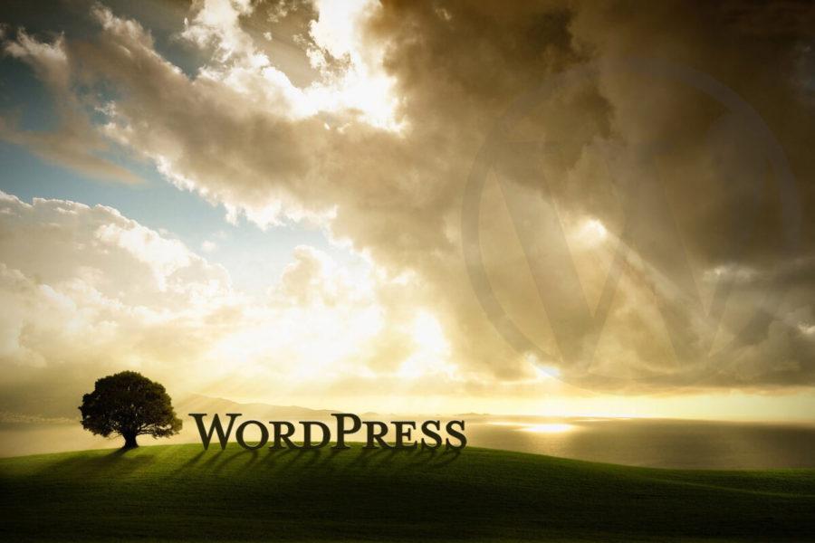 Hacer funcionar WordPress en la raíz de tu sitio web - Iborra Web Design
